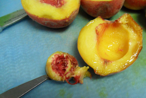 Removing peach pit flesh with melon baller