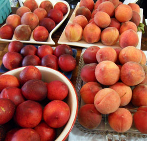 Too many peaches (and nectarines)